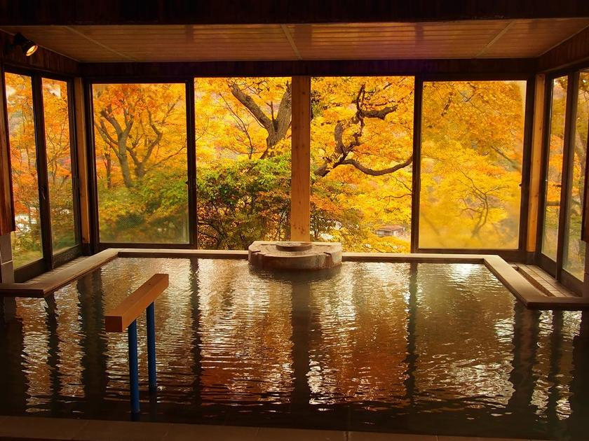 Outdoor Onsen and Autumn Colours in November